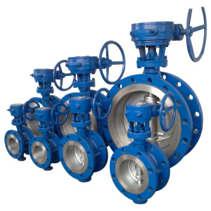 Marine Double Flanged Butterfly Valve with Worm Gear