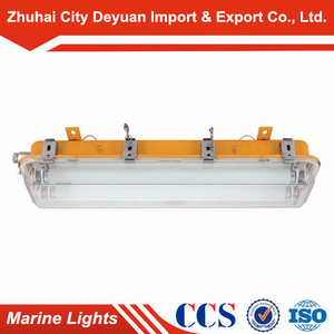 Cfy21-2 Explosion-Proof Fluorescent Light